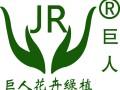 南昌植物租赁南昌绿植租摆南昌花卉盆栽出租