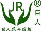 南昌办公室绿植租赁,南昌巨人花卉绿植公司