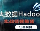 Hadoop大数据从入门到精通(行业最强,备javaee)