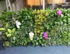 北京人造植物墙厂家仿真立体墙定做