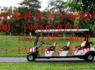 专业维修重庆各种低速电动汽车 观光车 巡逻车 搬运车 环卫车面议