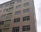 古三全新大小厂房分租楼上楼下每层1100方