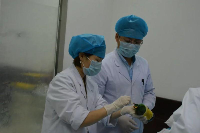 北京军地专业正规微整形注射美容培训 高级微创美容师培训