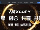 XCOPY国内期货策略共享社区,改变国内期货交易的方式
