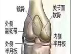 膝关节疼痛关节间隙狭窄用百灵奇草贴服务周到