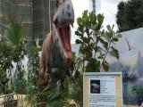 恐龙模型出租公司