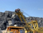 优质煤炭、原煤批发, 哈尔滨煤炭批发,就选赵氏煤炭