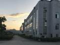 珞璜工业园标准单层钢架结构厂房出租