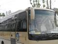 滁州中巴车、大巴车租赁