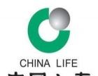 中国人寿保险公司