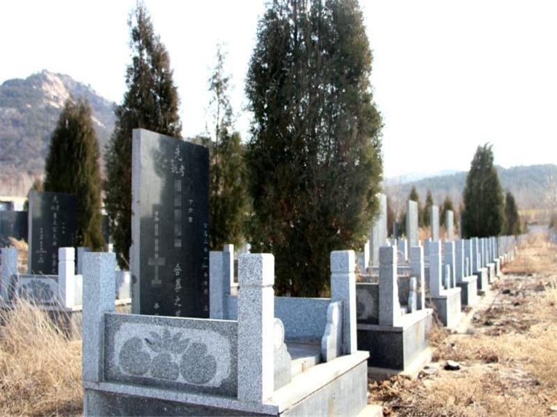 重庆走马镇金银山公墓全市性价比较高的墓地(环境好,全年管理维 第3张