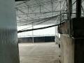 通江 审计局 2室 2厅 90平米