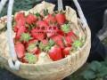 上海周边农家乐推荐 采草莓钓大鱼 享受美食美景