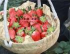 上海周边农家乐一日游 钓鱼采桔 烧烤唱歌 体验农家风情