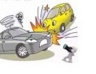 事故保险理赔,办好索赔手续后要多长时间钱才能到?