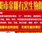 耒阳市金雕有害生物防治有限公司|耒阳灭蟑螂|耒阳
