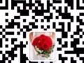 特价鲜花,全城免费配送