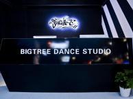 苏州暑期街舞培训尽在Bigtree街舞工作室