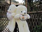 淘宝热卖新款天天好心情熊情侣熊娃娃熊抱心熊女友生日礼物礼品