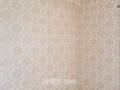 专业佛山液体壁纸,佛山硅藻泥,佛山肌理壁膜施工