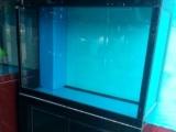 广州订做 风水屏缸.超白鱼缸.海水鱼缸.海鲜池叠缸