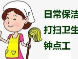 武进区湖塘家政保洁小时工家庭打扫卫生清理垃圾