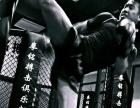 自由搏击,散打,泰拳,跆拳道