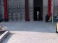 南江 正威饲料旁(广恩菜市场) 厂房 300平米