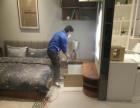 霞山专业室内空气净化车内空气净化除甲醛除异味