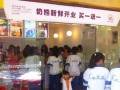 杭州奶熊奶茶加盟多少钱 杭州奶熊奶茶加盟电话