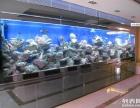广州琶洲会馆水族世界展览会海水鱼缸设计,广州定做大型海水鱼缸