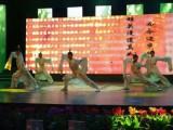 专业演出开场舞蹈节目表演 发布会节目定制开场舞表演咨询