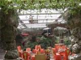 广东纹络尖顶型休闲旅游娱乐生态餐厅 温室玻璃架构施工报价