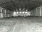 独立星棚厂房 临近百安路 龙江 250电