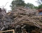 同安废旧电线电缆回收设备-厦门岛外废不锈钢报价