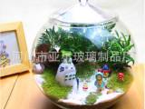 特价创意苔藓植物微景观生态瓶 DIY造景玩具 活动促销礼品 定制