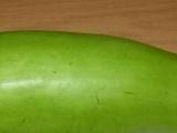 供应 葫芦瓜 蔬菜基地直销 无公害蔬菜 6大优势