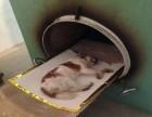 闸北区静安区宠物安乐宠物火化一条龙服务大宁路动物殡葬电话