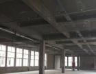 亳州幼师往南服装城里面 仓库 2300平米