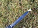红嘴蓝雀幼鸟头窝!有长大后的图只能自提!