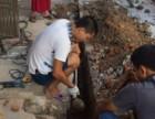 肇庆疏通厕所 下水道管道 清理化粪池 来电享优惠