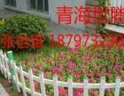 海东厂家定制景区绿化草坪护栏 城市道路绿化pvc护栏