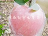 陕西帅威红富士苹果-精选鲜果 新鲜可口 快来购