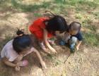 深圳周边亲子户外一日游充实且好玩场地推荐松湖生态园