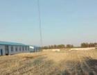 出租出售厂房适合加工厂和养殖