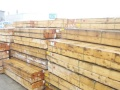 供应雪松板材防腐木 黄雪松价格 黄雪松供应商