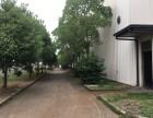 离青浦奥特莱斯仅6公里6000平米单层车间厂房出租