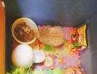 杏色刺猬宠物活体