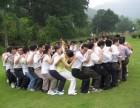 深圳公司集体活动好去处 年会组织 聚餐活动 会议