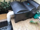 杭州魚池過濾建設 錦鯉銷售 魚池清洗
